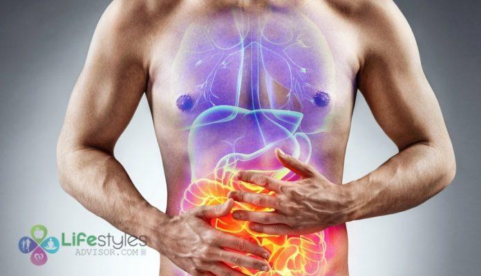 improve digestion system